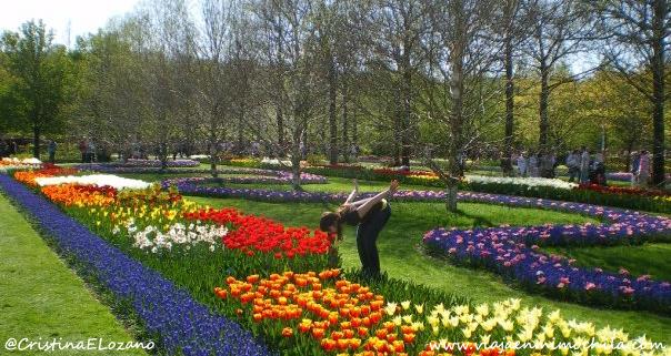 Visita keukenhof el port aventura de los tulipanes viaja en mi mochila - Jardines de tulipanes en holanda ...