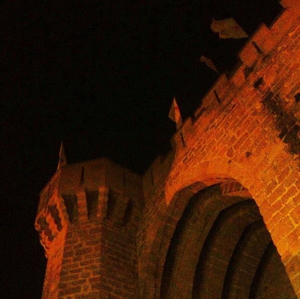 Castillo de Olite (Navarra)