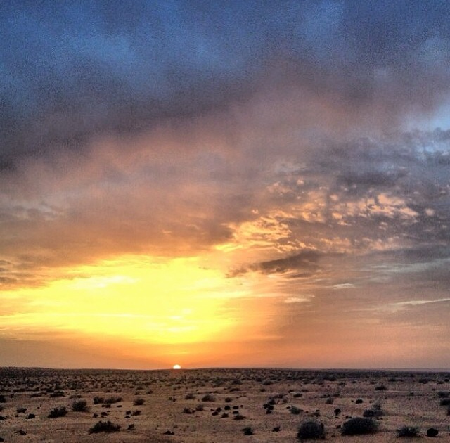 Atardecer en el predesierto del Sahara tipo sabana (Túnez)