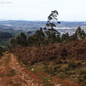 Subida a Peña Cabarga (Cantabria)