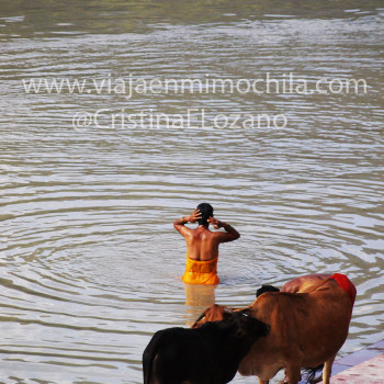 Mujer bañándose en el Ganges. Rishikesh (Dehradun, Uttarakhand)