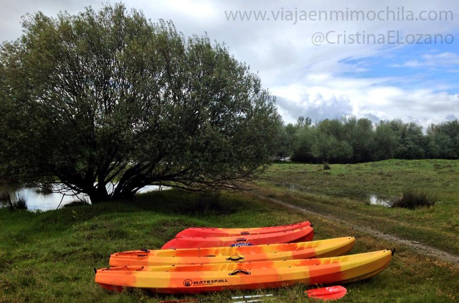 Piraguas listas para descender el río Tiétar. Cáceres (Extremadura. España)