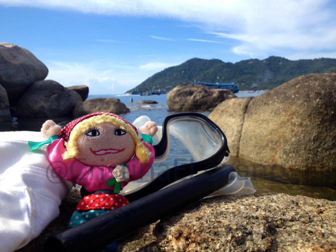 Marijaia bucea en Koh Tao (Golfo de Tailandia)
