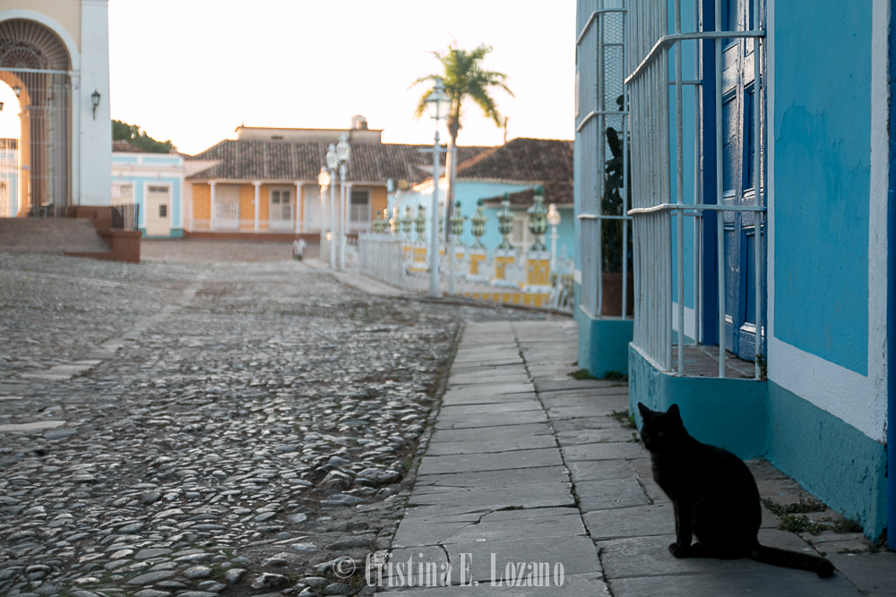 Guía rápida de Cuba- un gato negro en Trinidad, Cuba