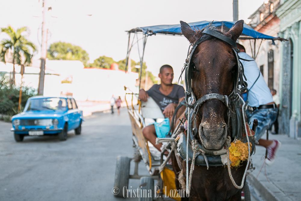 Guía rápida de Cuba- una carreta de caballos en Cienfuegos
