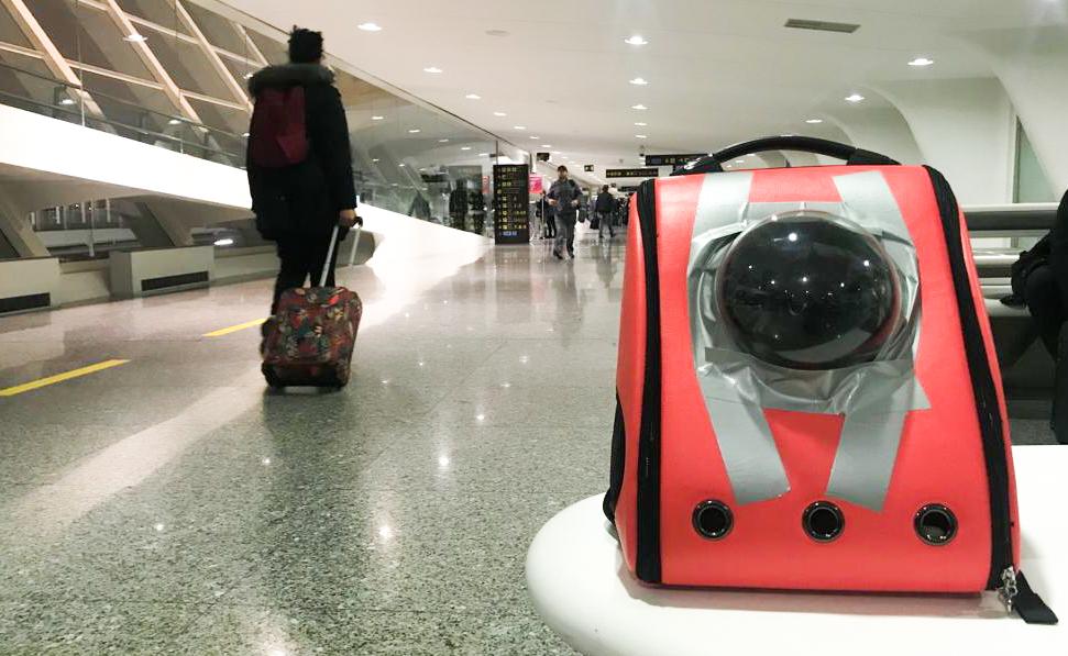 Transportin homologado para viajar en avión y volar con un gato-13