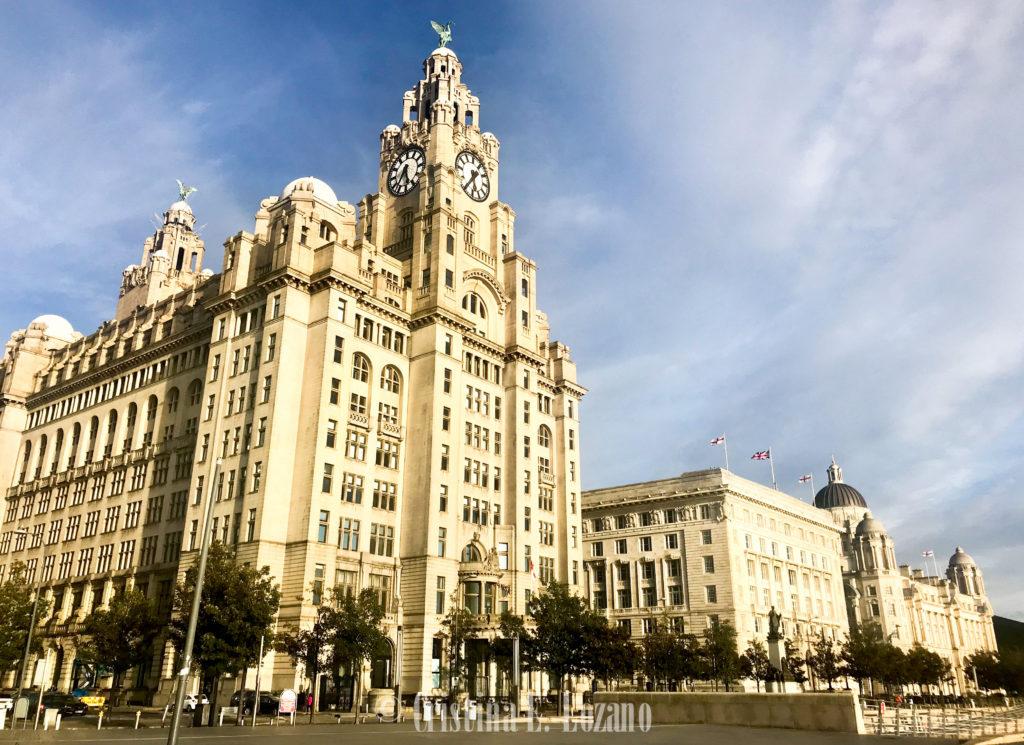 Qué ver y que hacer en Liverpool gratis. Royal Liver Building