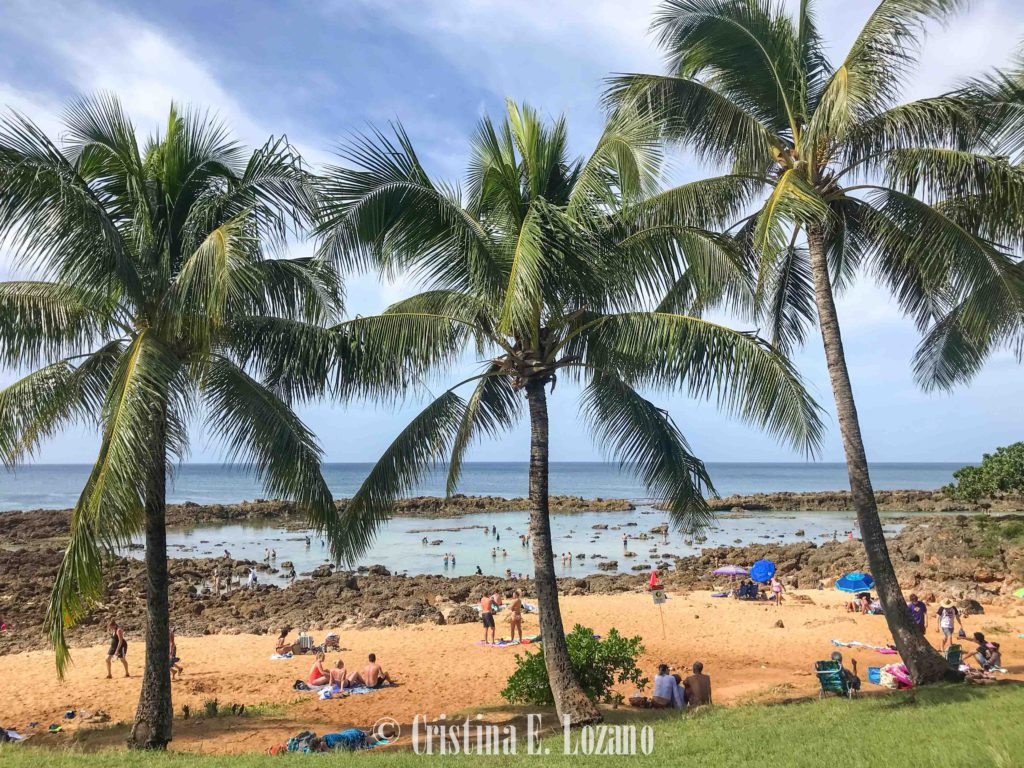 Hawái barato- alojaiento económico en Oahu, Big Island y Maui-24