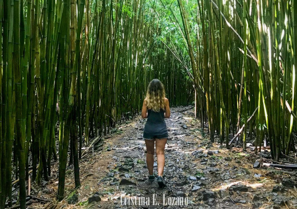 Hawái barato- alojaiento económico en Oahu, Big Island y Maui-36