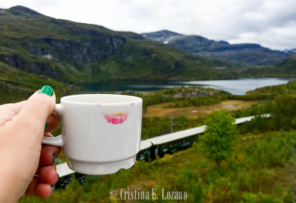 Norway in a Nutshell Noruega-2